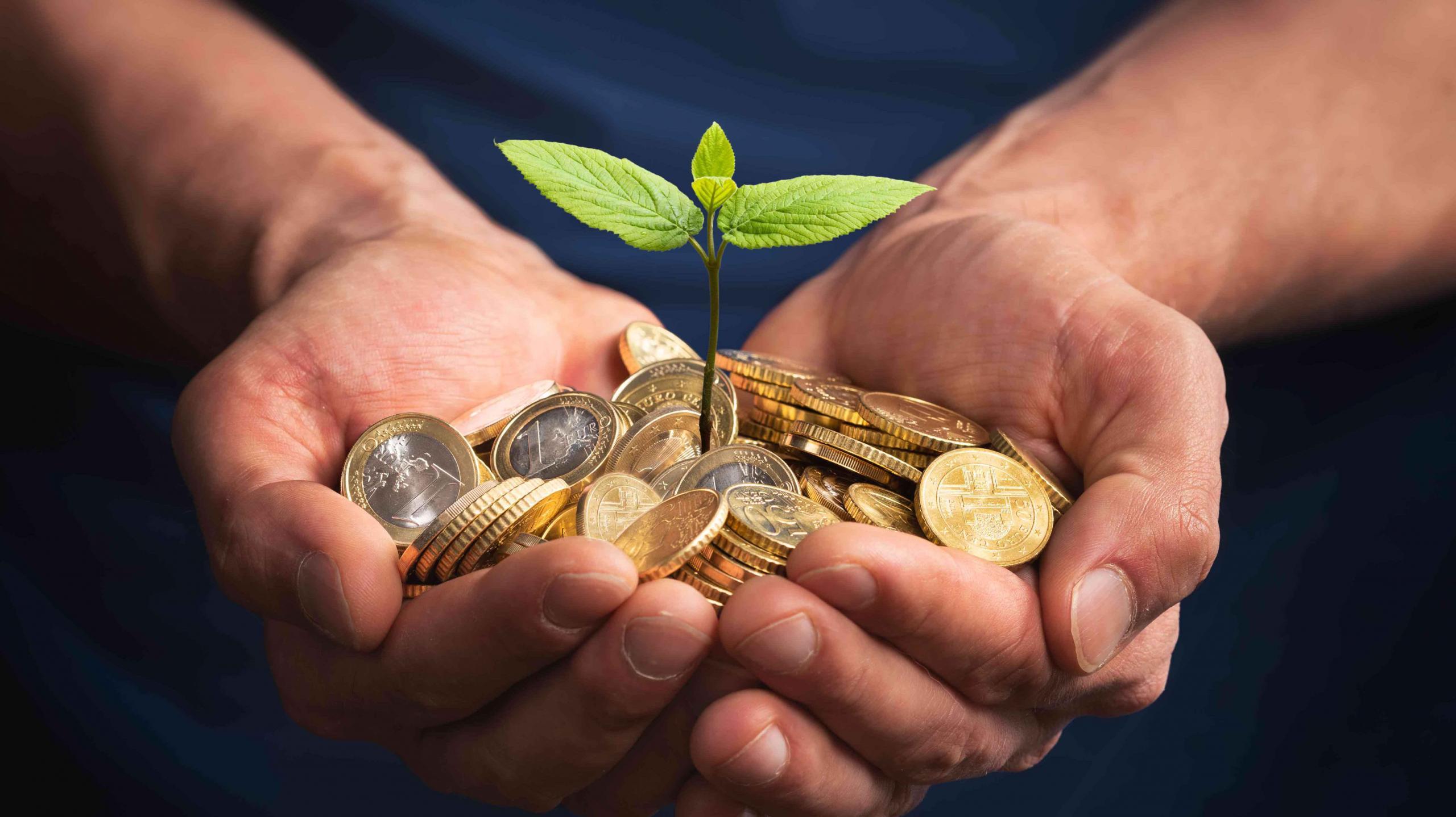 Nachhaltigkeit: Die Verantwortung wächst
